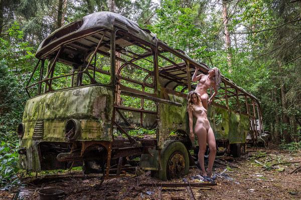 Into the wild (Jungle bus)