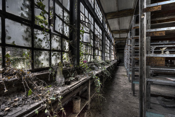 Old glass (Crystal factory)