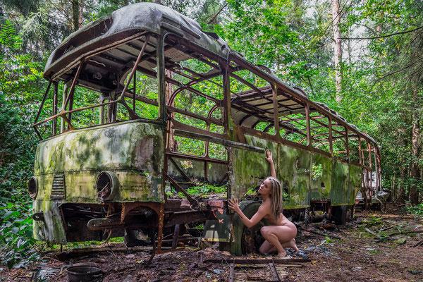 Survive (Jungle bus)