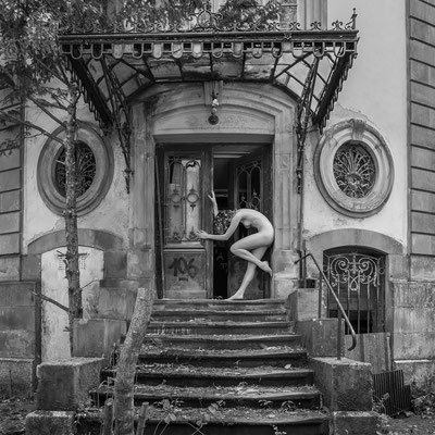 Let me in (B&W) (Chateau Lumiere)
