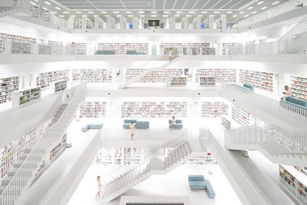 Der Bibliothek