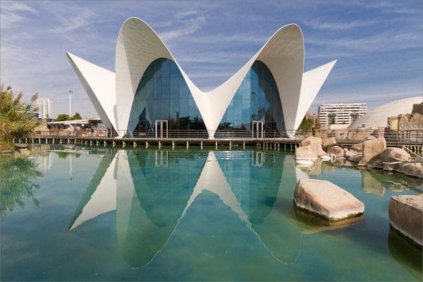 Oceanogràfic, Valence, Espagne