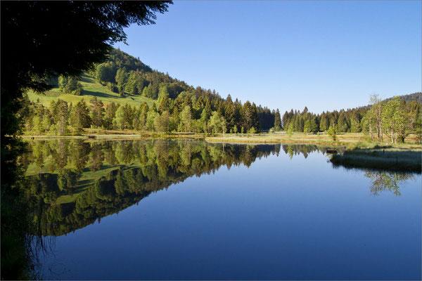 Lac de Lispach, Vosges, France