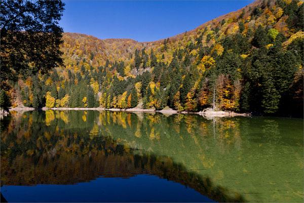 Lac d'Altenweiher, Vosges, France