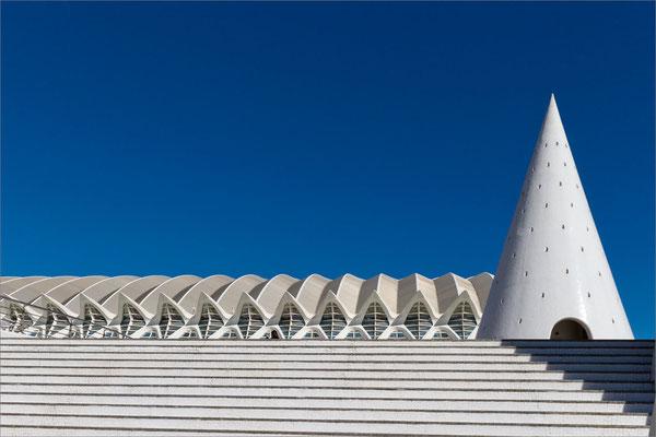Museo de las Ciencias, Valence, Espagne