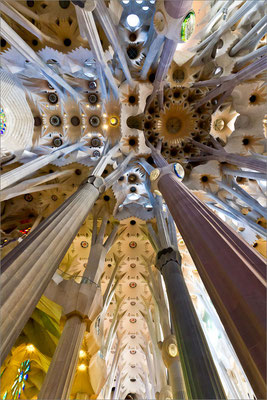 Sagrada Família (voûte), Barcelone, Espagne