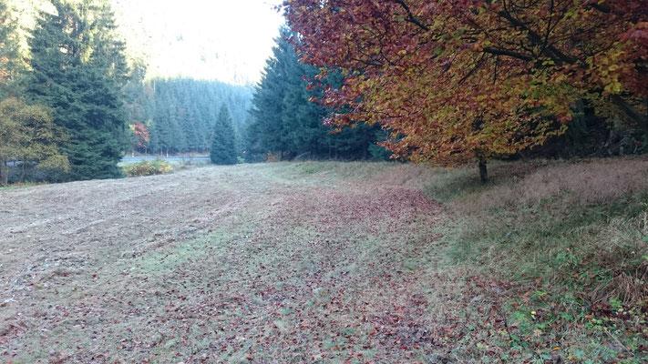Mulchen im Herbst