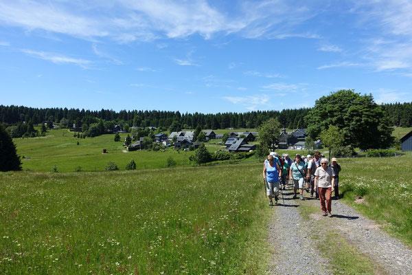 Wäldlertour zu den Arnikawiesen um Friedrichshöhe, Juni 2017