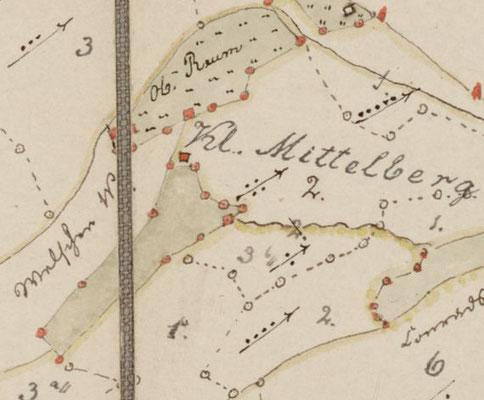 Forstkarte, nach 1800
