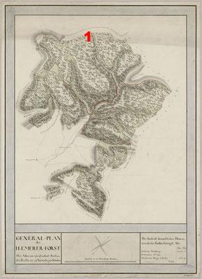 Hämmerer Forst, Forstkarte, Staatsarchiv Meiningen, 1797