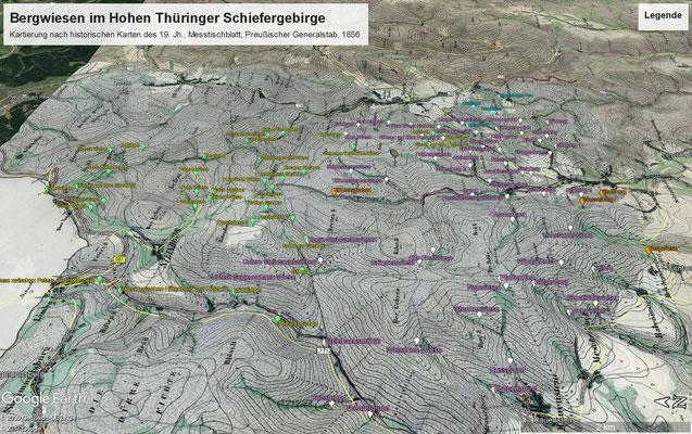Messtischblattmontage mit Beschriftung an den kartierten Wiesen, Blick von Westen