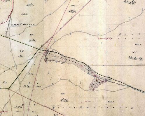 Gründerswiese, Landesvermessung 1864