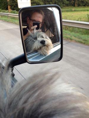 Er schaut gerne mal raus.