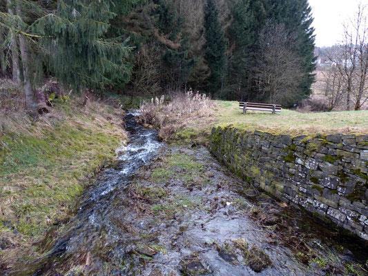 Naturspiel II.
