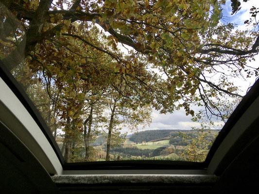 Auch das Panoramafenster offenbart einen tollen Ausblick in die Natur.