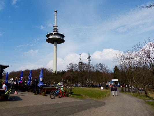 Auf dem Vogelsberg.