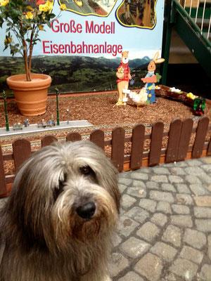 Auch für Eisenbahnfreund*innen gibt es etwas in Monschau zu sehen.