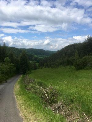 In Thalwenden und Umgebung, II.