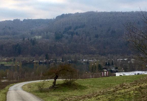 Aufstieg vom Campingplatz in Richtung Buchenwald