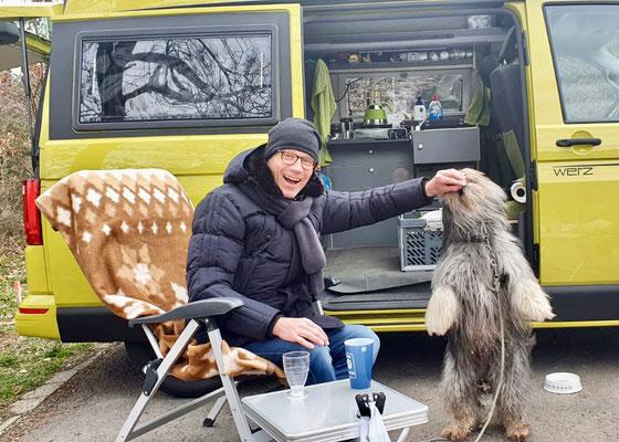 Ein Wookie:-)