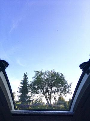 Schöner Ausblick aus dem Panoramafenster.