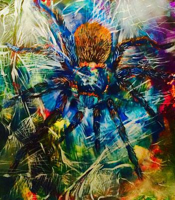 Spider Art - Lack, Acryl, Öl auf Leinwand 100 x 100 cm