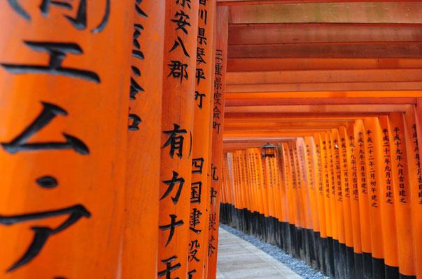 Kyoto: Torii-Tore am Fushimi Inari