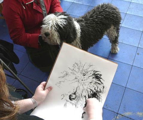 Обожаю рисовать шерстяных собак.