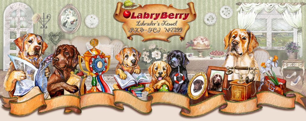 Отрисовка элементов интерфейса и разработка общей концепции сайта для питомника Lubryberry