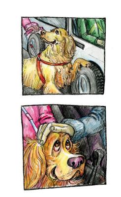 """Иллюстрации к рассказу """"Гнусусы"""". Журнал """"Друг. Для любителей собак"""", №1, 2011."""