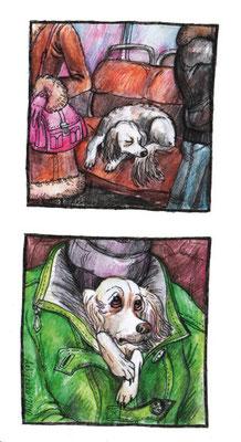 """Иллюстрации к коротким рассказам о собаках. Журнал """"Друг. Для любителей собак"""". №2, 2011."""
