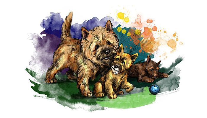 """Иллюстрация для журнала """"Друг для любителей собак""""."""