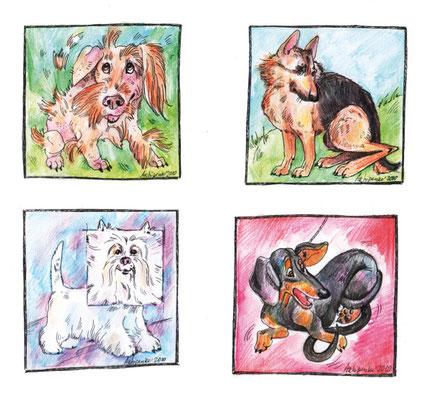 """Шаржи к рубрике """"Перлы экспертов"""". Журнал """"Друг. Для любителей собак"""". №2, 2011."""