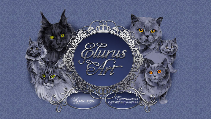 """Входная заставка на сайте питомника мейн-кунов и британских короткошёрстных кошек """"Элурус арт""""."""