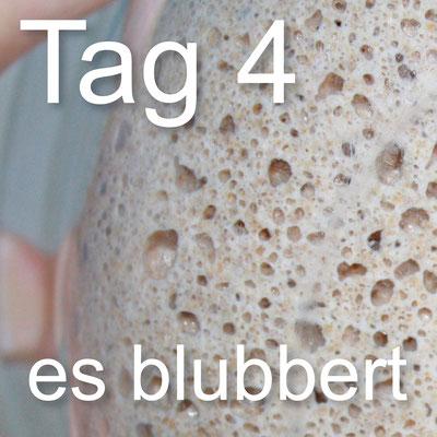 Sauerteig_Tagebuch_Tag_4_es blubbert