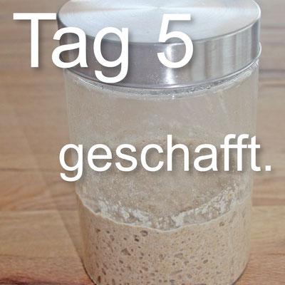 Sauerteig_Tagebuch_Tag_5_geschafft.