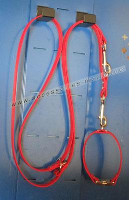 Leine und Halsband aus BioThane