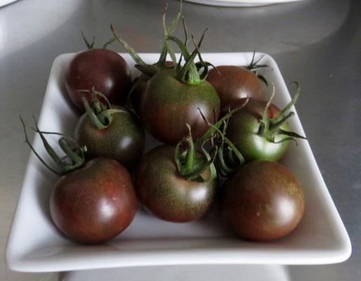 Lila Tomaten vom Hof