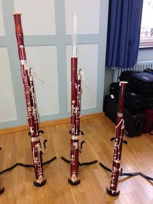 Swiss Bassoon Days 2016, Musikpunkt, Lohri, Nathalie Blaser, Musikschule Allschwil, Bassoon, Fagott, notecafé