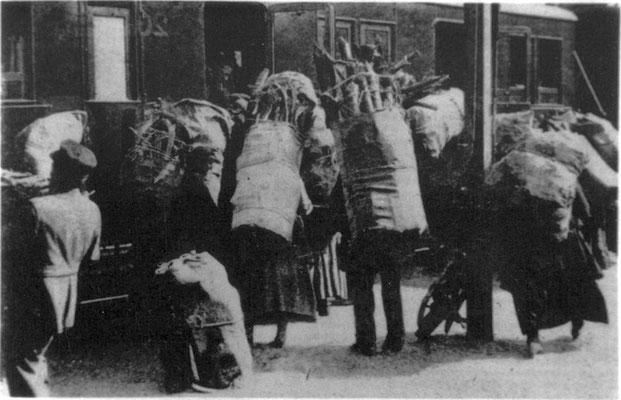 Mangel an Heizmaterial auch nach dem Krieg. Die Bevölkerung sammelt Holz außerhalb der Stadt. Städtisches Museum Göttingen