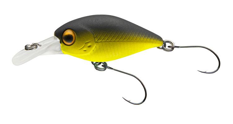 53-04432 yellow / black