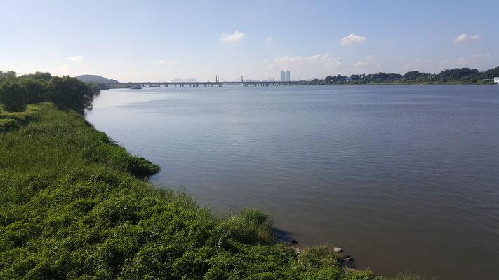 江西湿地生態公園(강서습지생태공원)