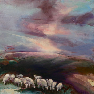 Schafe im Bergischen II, 50/50 cm, 2020