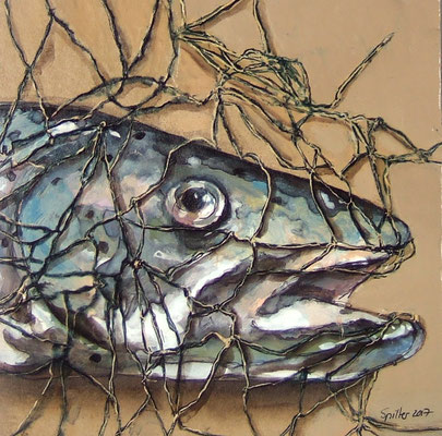 Pappfisch XVII, 19/19 cm, 2017