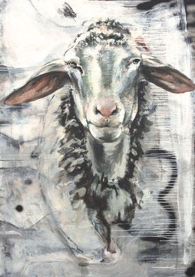 Schaf mit Fliege, 140/100 cm, 2018