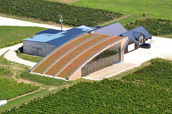 Le Champ du Pré - Chambre d'hôtes Sologne Val de Loire - A faire : Découverte des vins de Cheverny et Cour-Cheverny au Domaine de Montcy Terra Laura