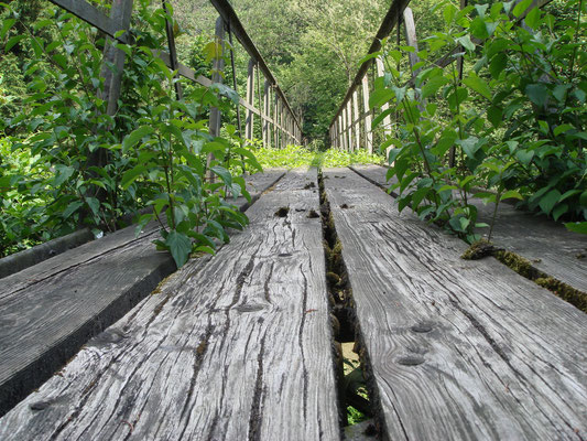 Brücke Töss