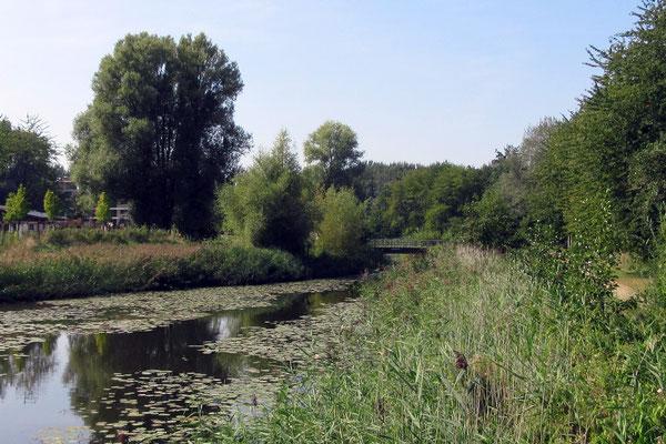 Voedselbos park Uithof