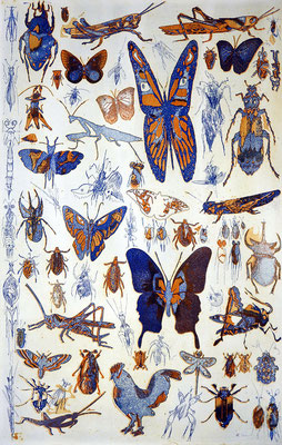 """""""70 / bugs and hoppers"""", Farbradierung von zwei Platten, 64 x 46 cm, auf Kupferdruckbütten"""