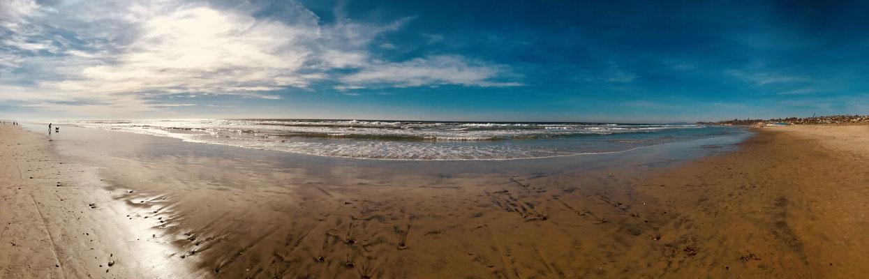Strandleben. Eine coole Dog Beach, an der Hunde nicht angeleint werden müssen, befindet sich quasi Downtown San Diego!